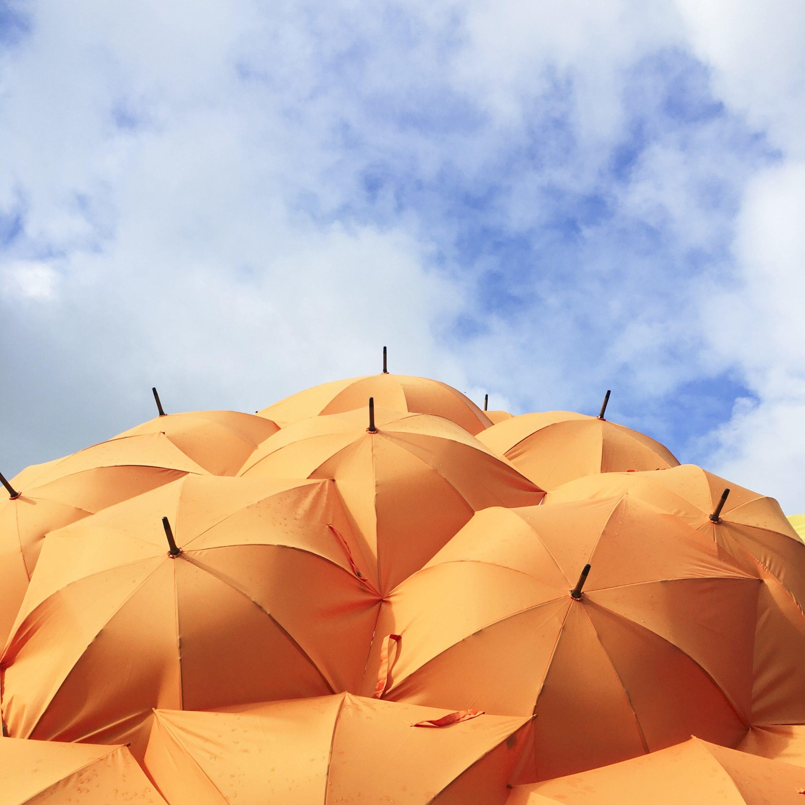 orange umbrella lot